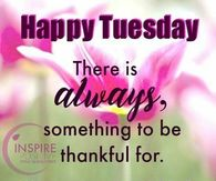 Happy Tuesday Quotes Pictures Photos Images And Pics For Facebook
