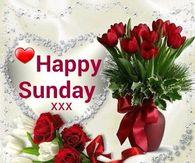 312309-Happy-Sunday-.jpg