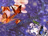 Good Evening Gif Pictures Photos Images And Pics For Facebook