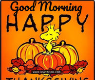 Happy Thanksgiving Good Morning Pictures Photos Images And Pics