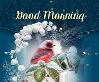 good morning new years quotes pictures photos images and pics for