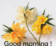 Good morning quotes for family and friends pictures photos images michele mightylinksfo