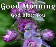 Good Morning Quotes For Friends And Family Pictures, Photos