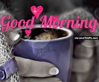 Image of: Breakfast Good Morning Love You Coffee Gif Quote Lovethispic Good Morning Love Quotes Pictures Photos Images And Pics For