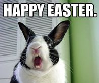 Easter Memes Pictures Photos Images And Pics For Facebook
