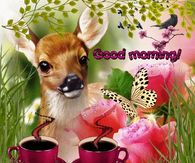 Nature Good Morning Gif