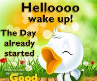 Good Morning Wishes Pictures Photos Images And Pics For Facebook