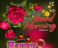 Good Morning Saturday Pictures Photos Images And Pics For