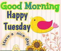 Birdy Good Morning Happy Tuesday Quote