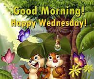 Good Morning Wednesday Pictures Photos Images And Pics For