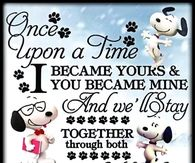 Snoopy Love Quotes Pictures, Photos, Images, and Pics for ...