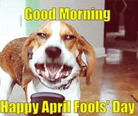 Happy April Fools Day Pictures Photos Images And Pics For
